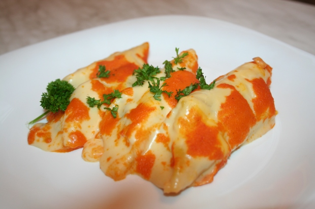 Meat stuffed canneloni with cheese and tomato sauce